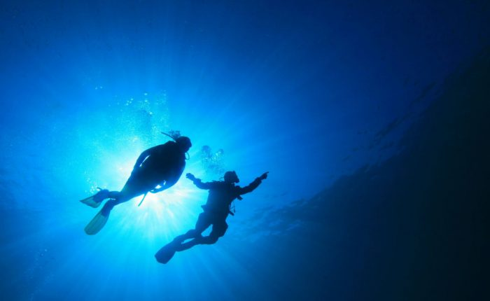 Scuba Diving Disney.pk